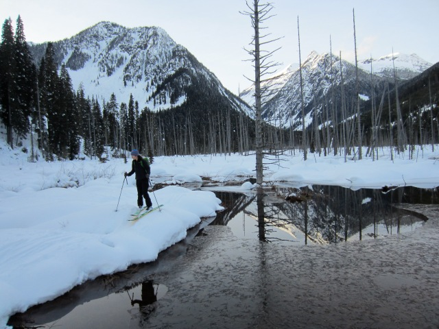 Karina skiing through the bog in North Joffre Creek.